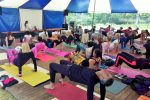 kickoff van Internationale Yoga Dag op landgoed Elswout 2