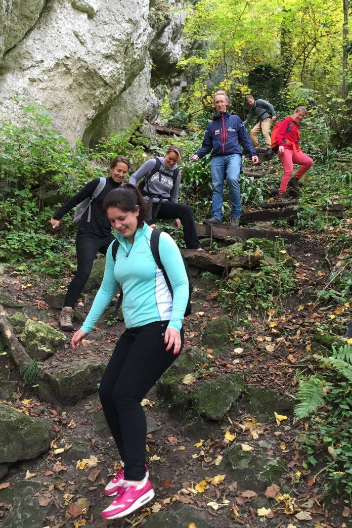 Haarlems bedrijf Insights Benelux beklimt Kilimanjaro voor ...